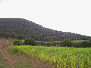 Reserva natural del Croscat