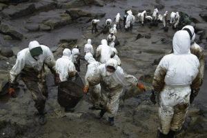 Voluntari@s en las costas de Galicia (Fuente: www.lavanguardia.com)