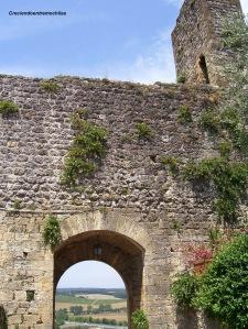 Vista de las murallas traseras de la aldea