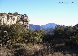 En la Sierra de Collsacabra (01.12.2013)