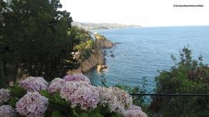Vista de la Costa Brava desde el Convent (14.7.2012)