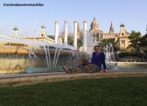 Descansando en Montjuïc (07.06.2014)